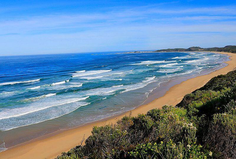 Homepage - garden route beaches