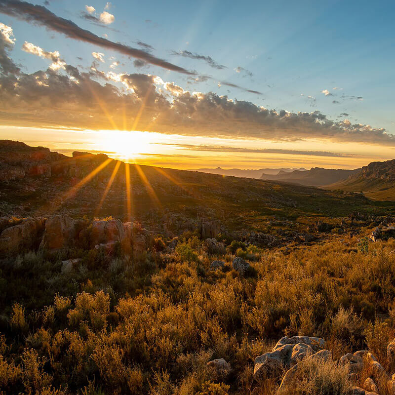 Offers - sunset over the Cederberg